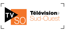 Télévision du Sud-Ouest