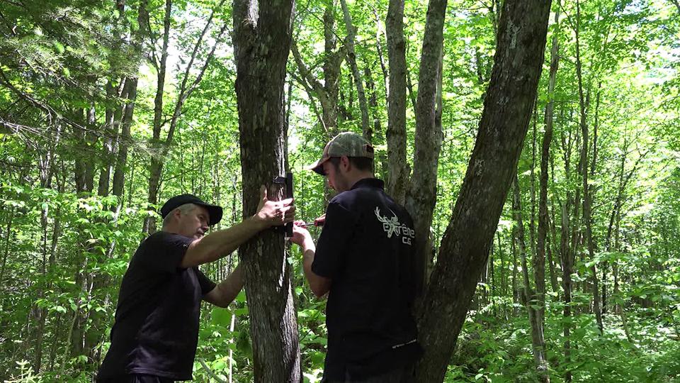 Préparation de chasse à l'orignal, chevreuil, ours