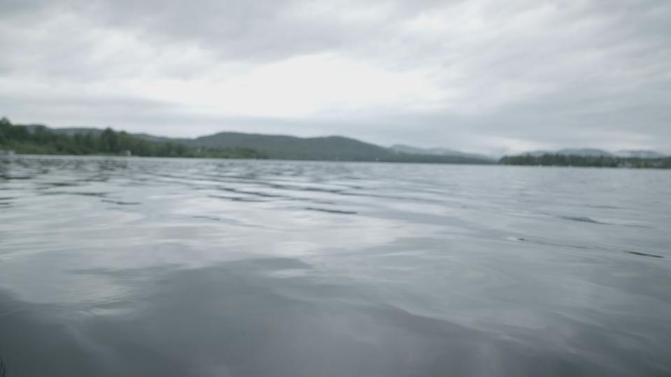 Les principaux contaminants du lac St-Charles - 1