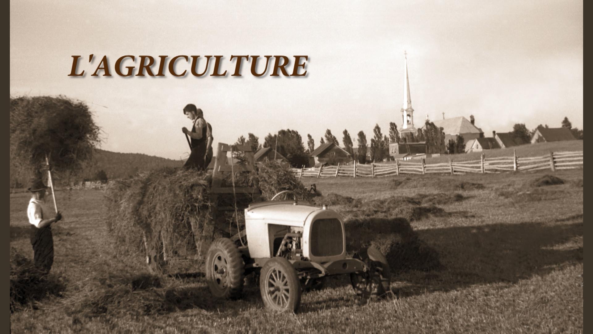 L'Agriculture au Témiscouata