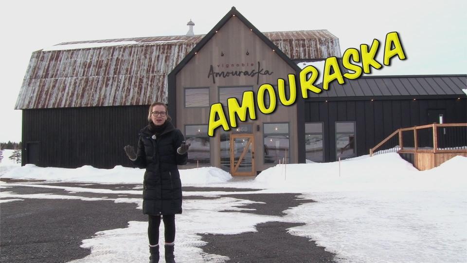 Vignoble Amouraska